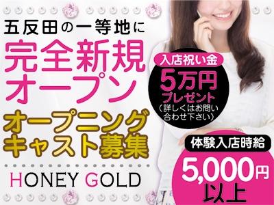 新橋セクキャバ「HONEY GOLD」の求人