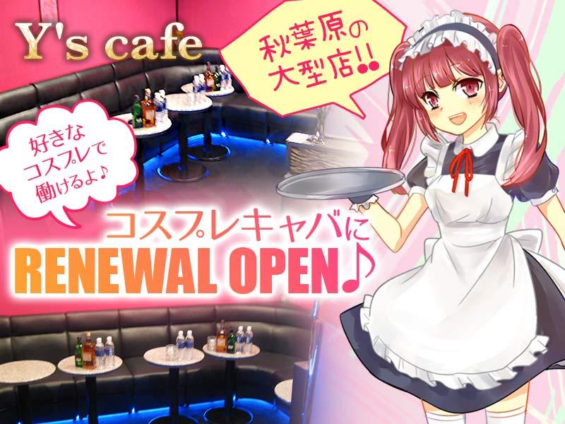 秋葉原キャバクラ「Y's cafe(ワイズカフェ)」の高収入求人