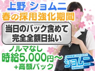 上野いちゃキャバ「ショムニ」の高収入求人