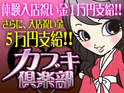 新宿歌舞伎町セクキャバ「カブキ倶楽部」の高収入求人