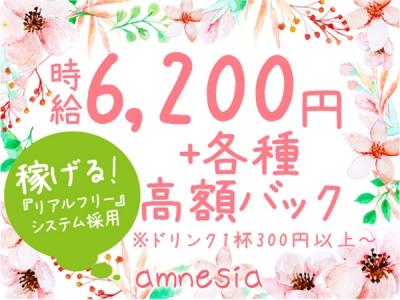 吉祥寺いちゃキャバ「amnesia(アムネシア)」の高収入求人