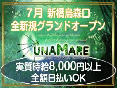 新橋いちゃキャバ「LUNAMARE(ルナマーレ)」の高収入求人