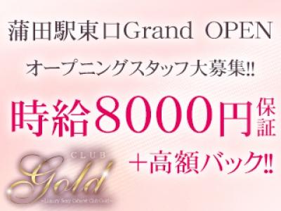 蒲田セクキャバ「蒲田 CLUB GOLD(ゴールド)」の高収入求人