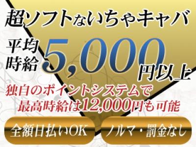 新宿歌舞伎町セクキャバ「Club Nocturne(ノクターン)」の高収入求人
