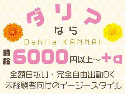 横浜セクキャバ「club Dahlia(クラブダリア)」の高収入求人