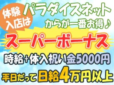 新宿歌舞伎町セクキャバ「Luxis(ラクシス)」の高収入求人