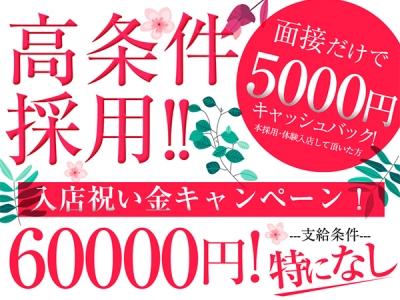 埼玉川越いちゃキャバ「club REALE(クラブリエール)」の高収入求人