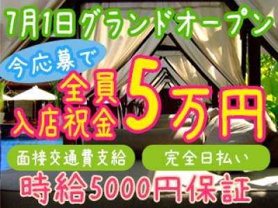 渋谷セクキャバ「渋谷 アンジェルス」の高収入求人