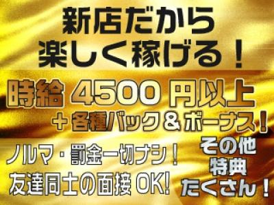 新宿セクキャバ「LEGEND(レジェンド)」の高収入求人