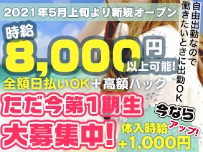 横浜セクキャバ「MANBOW YOKOHAMA(マンボウヨコハマ)」の高収入求人